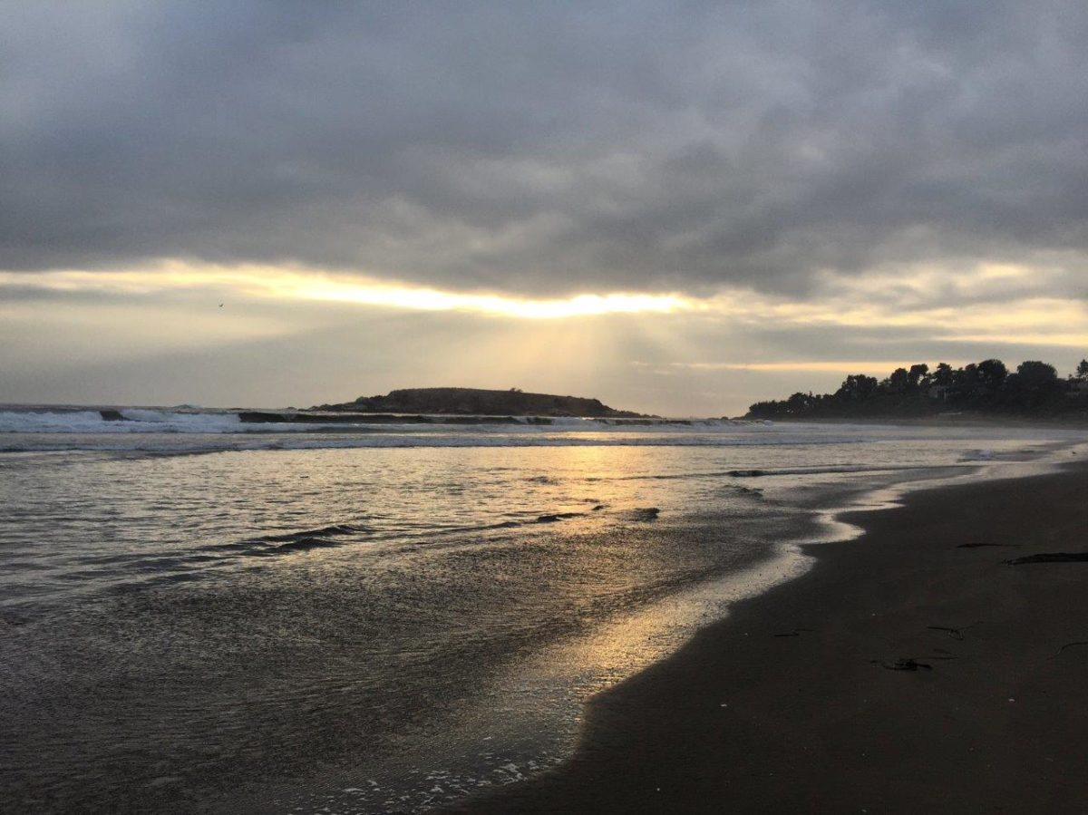 playa-cachagua