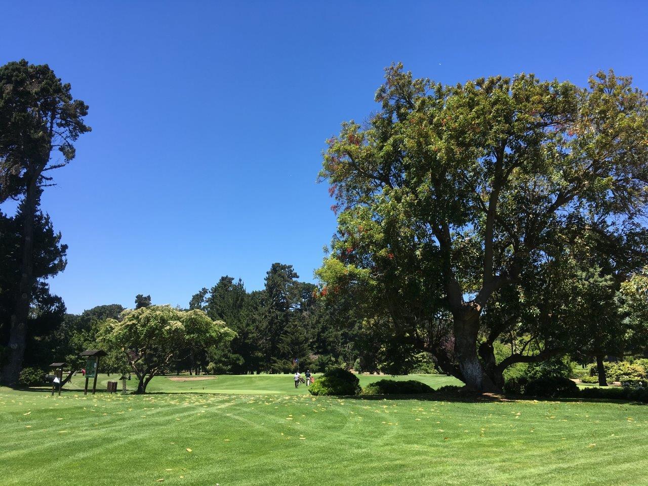 golf-golfistas-santo-domingo