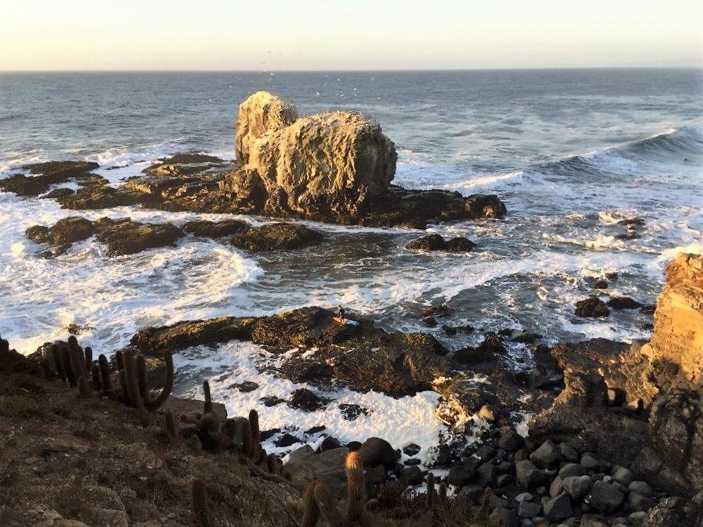 punta-de-lobos-surf