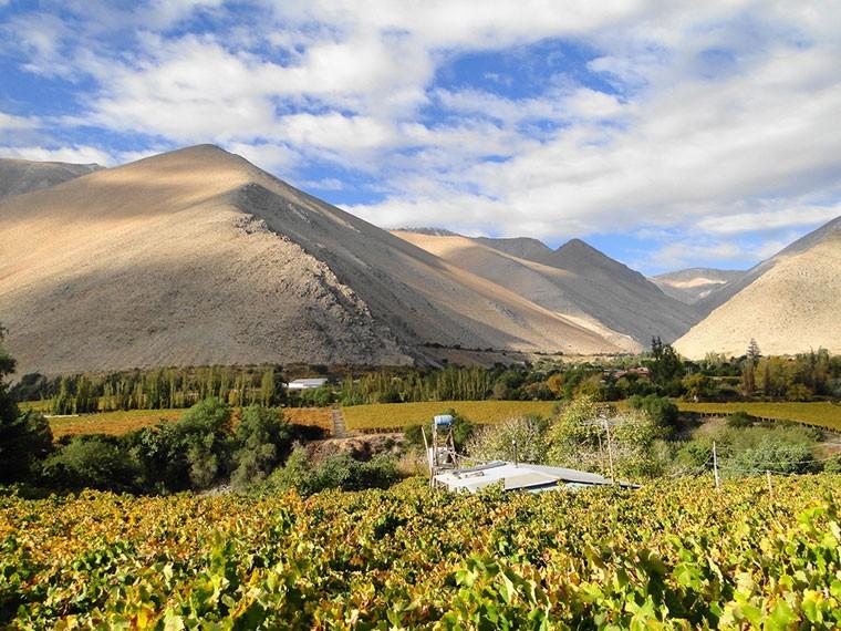 paihuano-valle-de-elqui